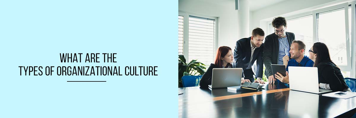 What are the types of Organizational Culture