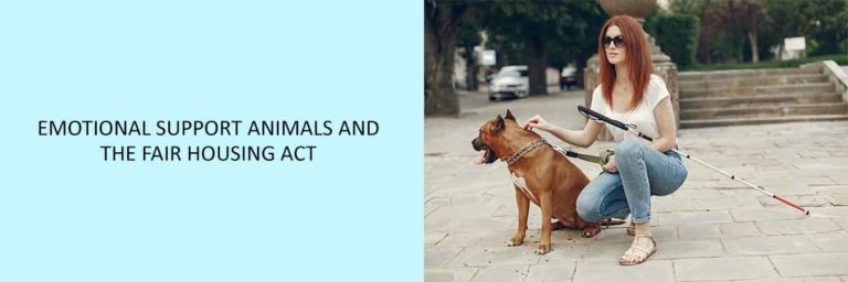 Emotional-Support-Animals-and-The-Fair-Housing-Act